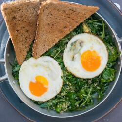 Salut Bar And Grill Brunch Fit Eggs
